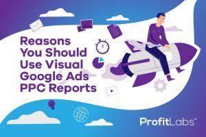 ProfitLabs_Blog Image - Reasons You Should Use Visual Google Ads PPC Reports